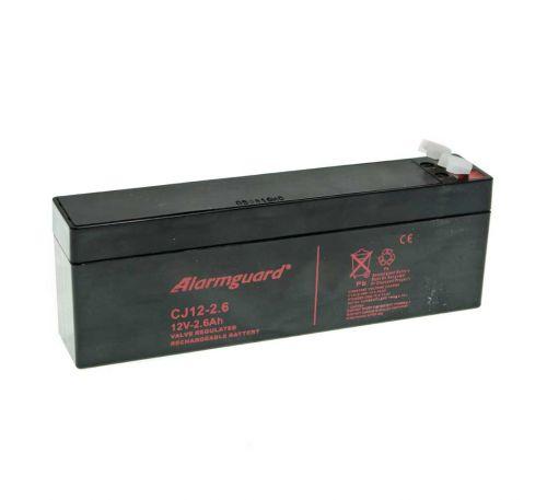 Аккумулятор Jablotron SA214